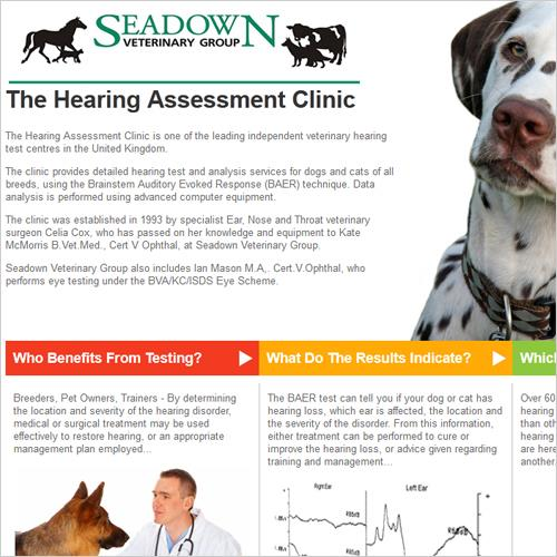 Dog Hearing Assessment Clinic Website